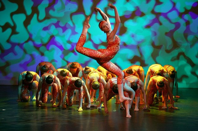 Charitable events and shows from Graham School of Dance